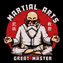 t-shirt Tortue Géniale art martiaux