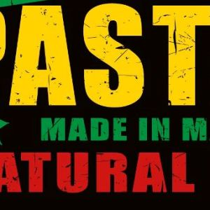 zoom t-shirt Légalise le Pastaga geek original