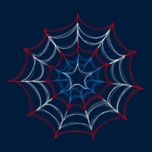dessin t-shirt Toile d'araignée geek original
