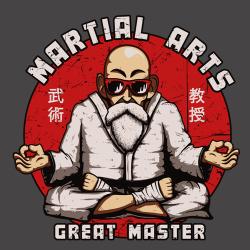 t-shirt Maître Tortue Géniale