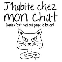 t-shirt J'habite chez mon chat